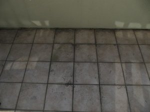 dirty deck grout